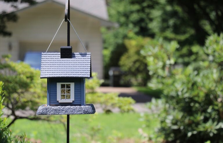 birdhouse, bird house, small